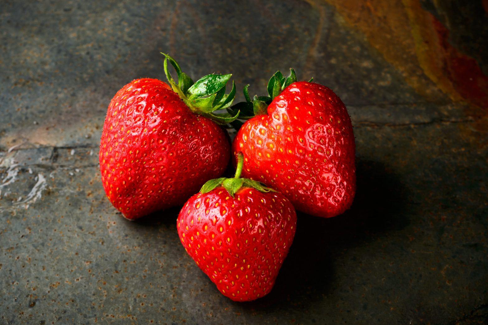 ГМО — поверхностный анализ