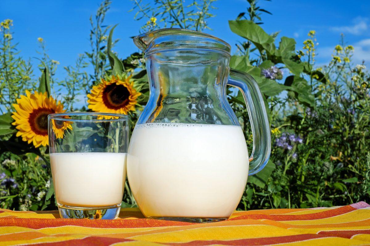 Безлактозная диета: можно и нужно ли исключать из рациона молоко?